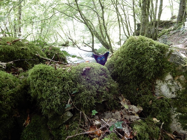 Peluche Love-Garou taille réduite, caché en forêt